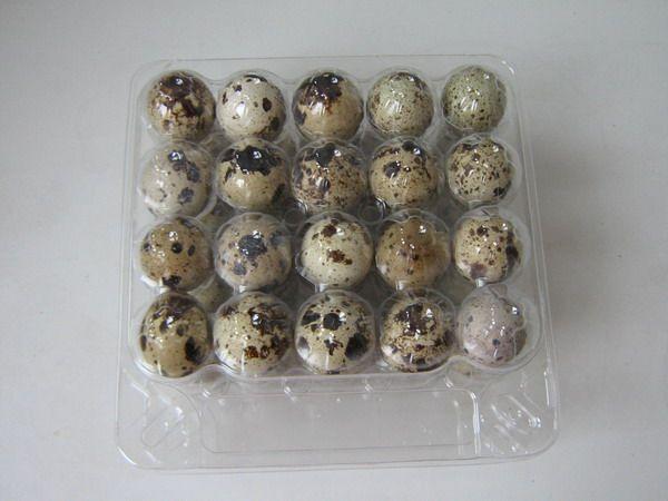 Упаковка перепелиных яиц
