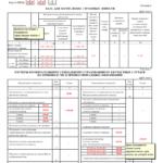 Отчёт для ФСС (лист 5)
