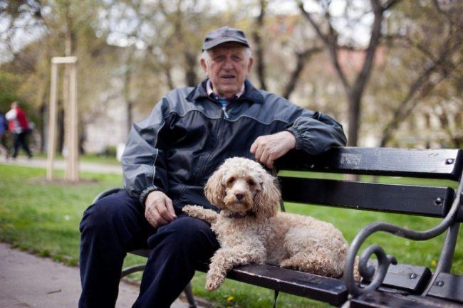 Пожилой мужчина с собакой сидит на скамейке