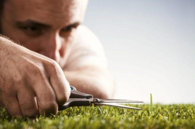 Мужчина срезает длинную траву