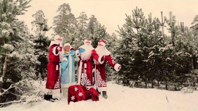 Деды Морозы и Снегурочка