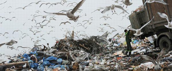 Полигон для сбора отходов