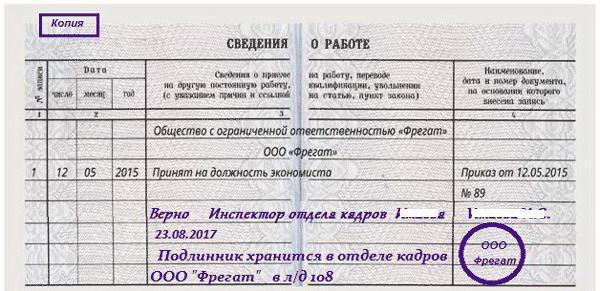 Копия трудовой книжки (от записи «верно» и т. д.)