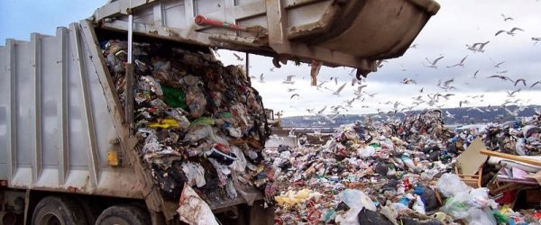 Большая группа российских ученых просит Путина остановить строительство мусорного полигона во Владимирской области