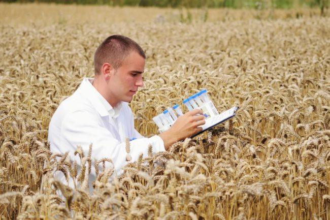 Агроинженер в поле