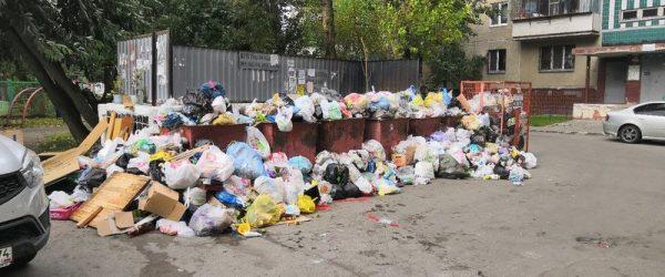 В Орле создадут оперативный штаб по контролю за вывозом мусора