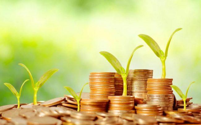 Монеты, растения
