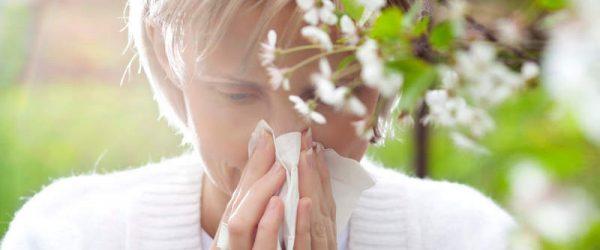 Более 1/4 россиян страдают от аллергии на растения