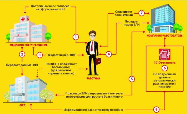 Схема движения электронного больничного листа