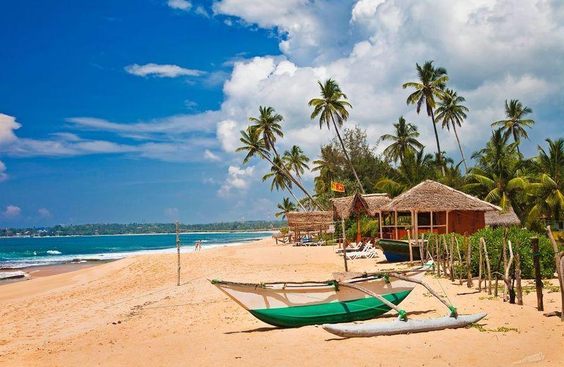 Российские туристы смогут получить визу на Шри-Ланку бесплатно