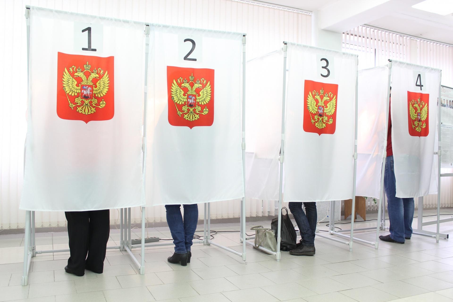 картинки с днем выборов губернатора один