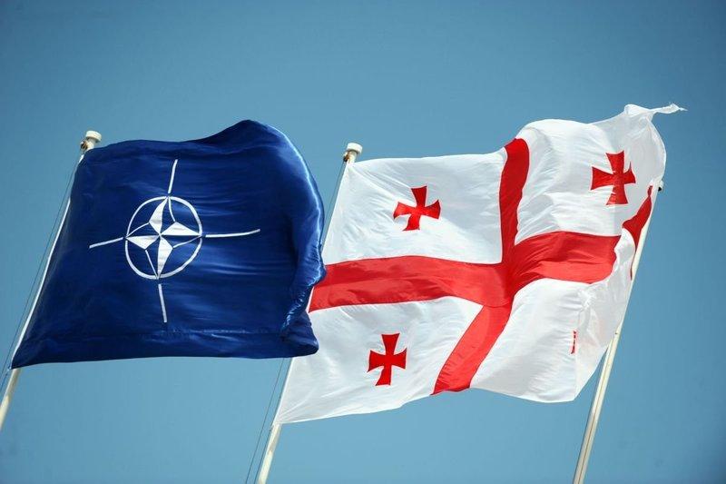 Грузии предложили вступить в НАТО без Южной Осетии и Абхазии