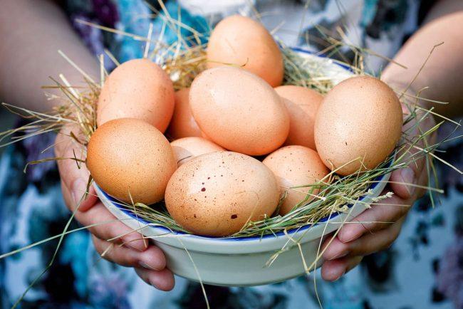 Куриные яйца в тарелке с сеном