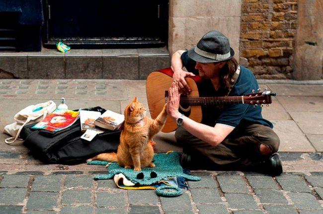 Музыкант на улице