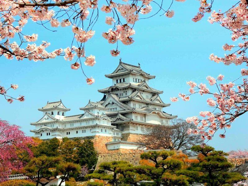 Обзор самых востребованных профессий в Японии